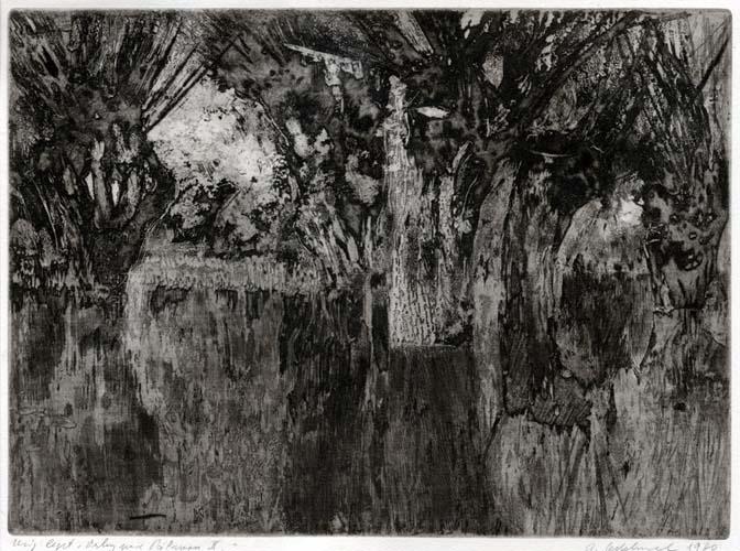 Vrby pod P‡lavou II., 1980