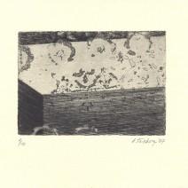 tachezyová 15