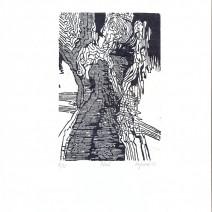 šafránek 11