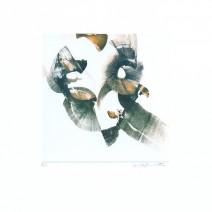 pošvic 06