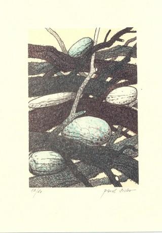 sivko 06