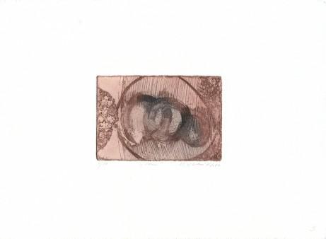 vilhelmová 08