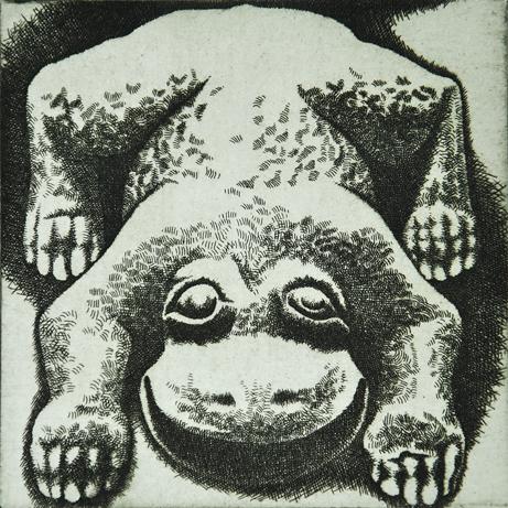 11) U Zelené žáby