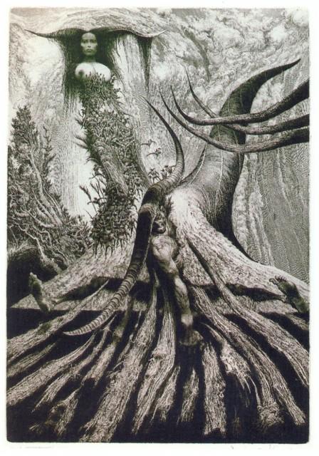 3. Keltské rohy (lept, 1992)