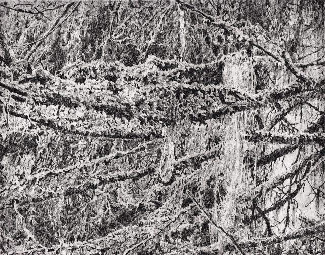 Po dešti, čárový lept, 2020 (25 x 20 cm)
