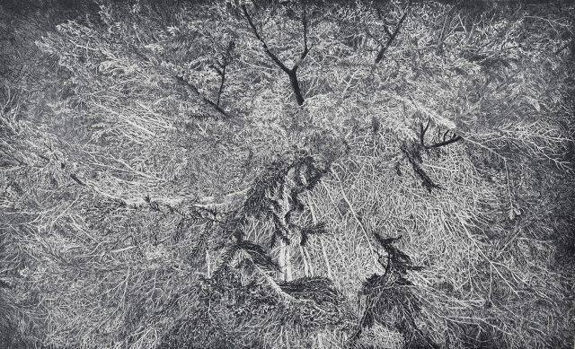 Přítomnost světla, čárový lept, 2017 (80 x 50 cm)
