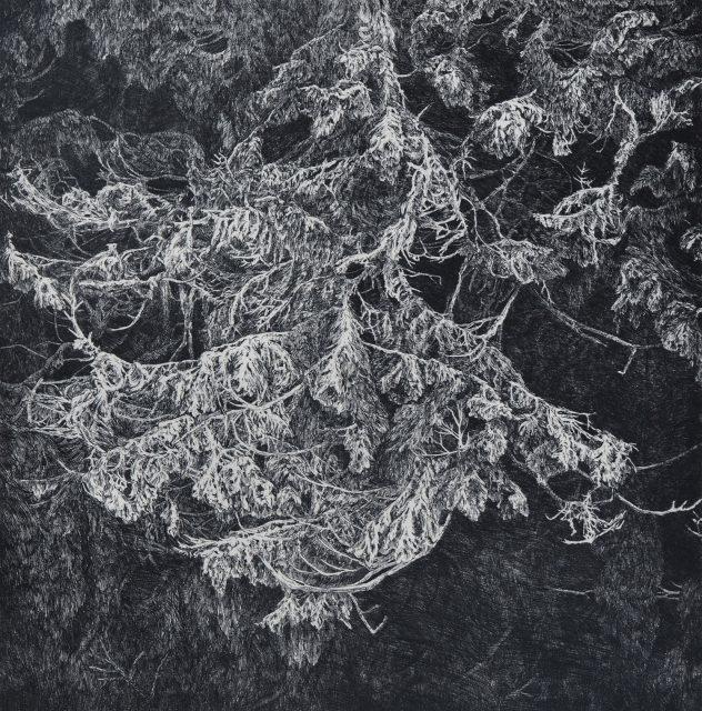 Strážce, čárový lept, 2014 (50 x 50 cm)