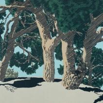 Ve slunci,2010,46x63