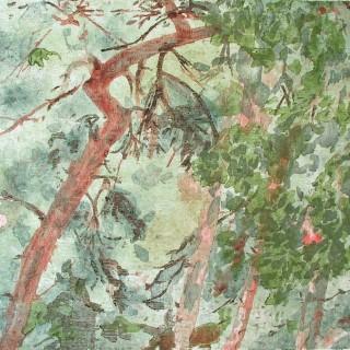 """Borovice II (sama)"" / 470 x 525 mm / barevný dřevořez / 2004"