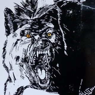 Vlk I -linoryt