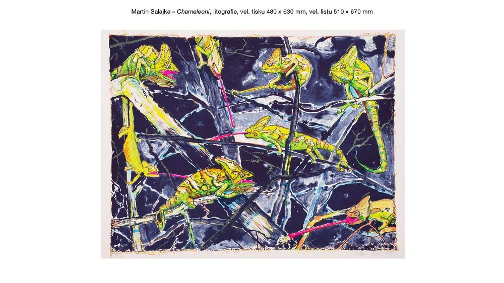 Cena za litografii - Martin Salajka