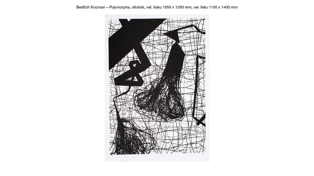 Cena za serigrafii - B. Kocman