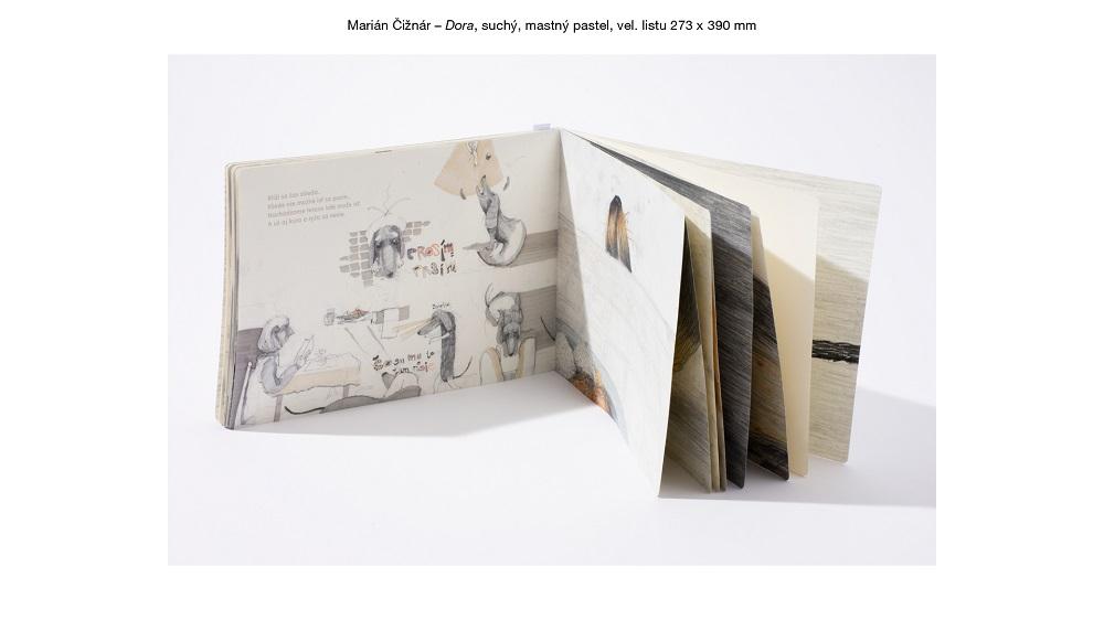 Hlavní cena autorská kniha - Marián Čižnár