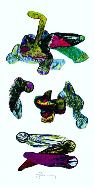 M. S. Lohnicky KATYUSHA GOES WEST prints 2021_Seite_1