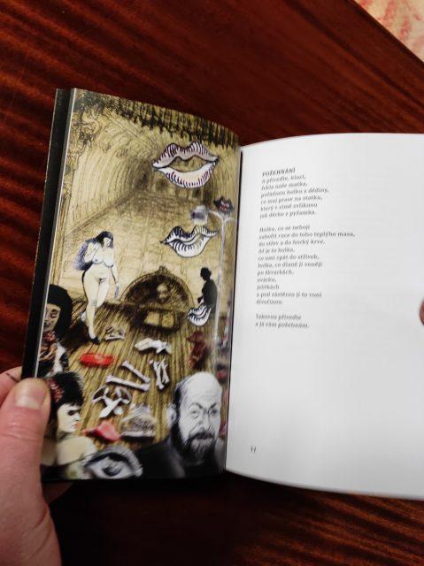 A kniha-david hrbek